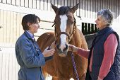 Vet In Discussion With Horse Owner