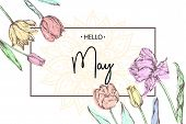 Inscription Hello May On Background With Hand Drawn Flowers. Vector Illustration. poster