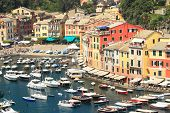 View on small bay with boats and yachts and multicolored houses of Portofino - small town on Ligurian sea in northern Italy.