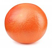 Perfectly Retouched Whole Orange Grapefruit Fruit Isolated On The White Background With Clipping Pat poster