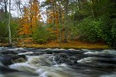 Flowing Bushkill Creek