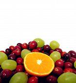 Beautufil Fruit