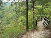 Footbridge In The Mountains