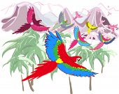 Macaws in jungles