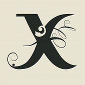calligraphic letter X