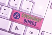 Text Sign Showing Government Bonds. Conceptual Photo Debt Security Issued By A Government To Support poster