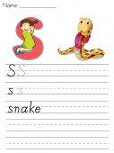 Alphabet worksheet of the letter S