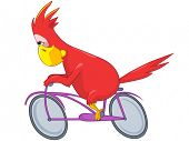 Cartoon Character Funny Parrot Isolated on White Background. Biker. Vector EPS 10.