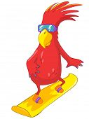 Cartoon Character Funny Parrot Isolated on White Background. Snowboarding. Vector EPS 10.