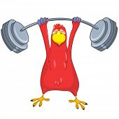 Cartoon Character Funny Parrot Isolated on White Background. Gym. Vector EPS 10.