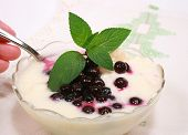 Blueberries With Fresh Yogurt And Mint Leaves