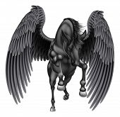 An Illustration Of A Black Pegasus Mythological Winged Horse Rearing On Its Hind Legs Or Running Or  poster