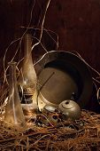 picture of loamy  - a still life founded in the old barn - JPG