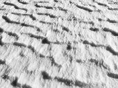 texture of snow