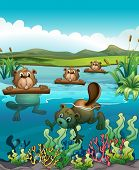 Illustration of the four beavers playing in the river