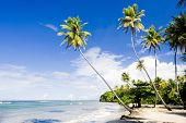 stock photo of greater antilles  - Northern coast of Trinidad - JPG