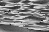 pic of wander  - Wandering in Sahara Desert - JPG