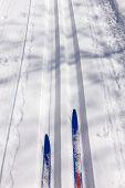 Ski Touring And Ski Tracks In Winter