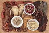 Chinese traditional herbal medicine selection over cork background.