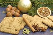 Traditional Spicy Christmas Cookies poster