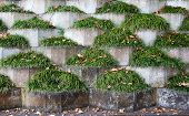 Grass Retaining Wall