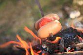 Grelhar salsichas