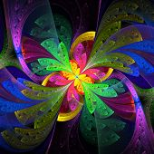 Multicolor Beautiful Fractal Flower. Computer Generated Graphics.