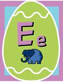 Flash Card E