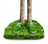 foto of carbon-footprint  - Green carbon footprint environmental concept shoes with trees isolated - JPG