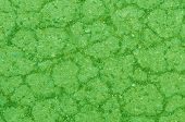 image of shale  - art background with shale and sandstone on sidewalk green abstract wallpaper - JPG