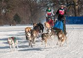 2014 Subaru Dogsled Loppet - Melissa Domino & Sherry Johnson