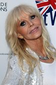 LOS ANGELES - APR 22:  Britt Ekland at the 8th Annual BritWeek Launch Party at The British Residence