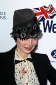 BODHILOS ANGELES - APR 22:  Toni Basil at the 8th Annual BritWeek Launch Party at The British Reside