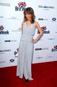 BODHILOS ANGELES - APR 22:  Maria Elena Infantino at the 8th Annual BritWeek Launch Party at The Bri