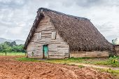 stock photo of tobacco barn  - Tobacco curing barn at the Vinales valley in Cuba - JPG