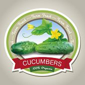 Fresh cucumbers label. Vector eps 10.