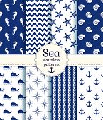 stock photo of seahorses  - Set of sea and nautical seamless patterns in white and navy blue colors - JPG