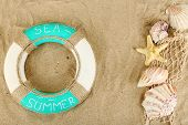 Lifebuoy and sea shells on sand