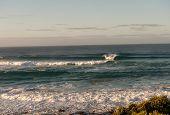 Johanna Beach Surf Swell