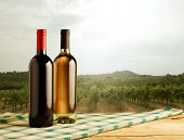 Rural Landscape With Wine Bottles On Foreground
