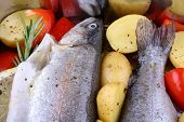 stock photo of brook trout  - Two marinated rainbow trout with red pepper close up - JPG