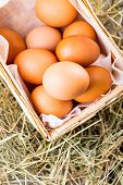 Raw organic eggs on wooden background. Bio/eco/organic/nat ural products.
