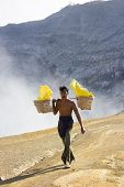 Worker Carries A Basket With Pieces Of Sulphur