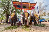 KOCHI, INDIA - FEBRUARY 24, 2013: Decorated elephants with brahmins (priests) in Hindu temple at tem