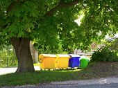 recycling containers under the chestnut tree