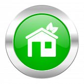 house green circle chrome web icon isolated