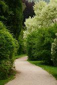 Secret Path at Ninfa