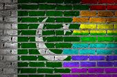 image of pakistani flag  - Dark brick wall texture  - JPG