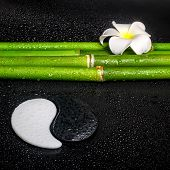Beautiful Spa Still Life Of Symbol Yin Yang, Frangipani Flower And Natural Bamboo On Zen Basalt Ston