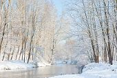 Winter landscape: small river in a snowy woods. North Italy, Europe.
